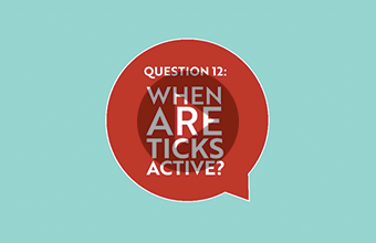 Question 12: When are ticks active? (video)
