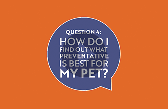 Question 4: How do I find out what preventative is best for my pet? (video)