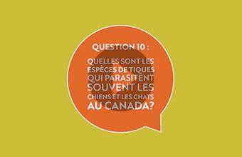 Question 10 : Quelles sont les espèces de tiques qui parasitent souvent les chiens et les chats au Canada? (vidéo)