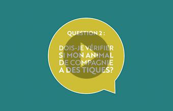 Question 2 : Dois-je vérifier si mon animal de compagnie a des tiques? (vidéo)
