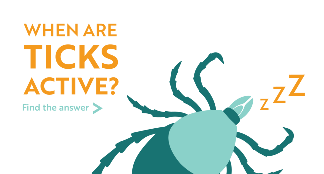 When are ticks active? Find the answer...