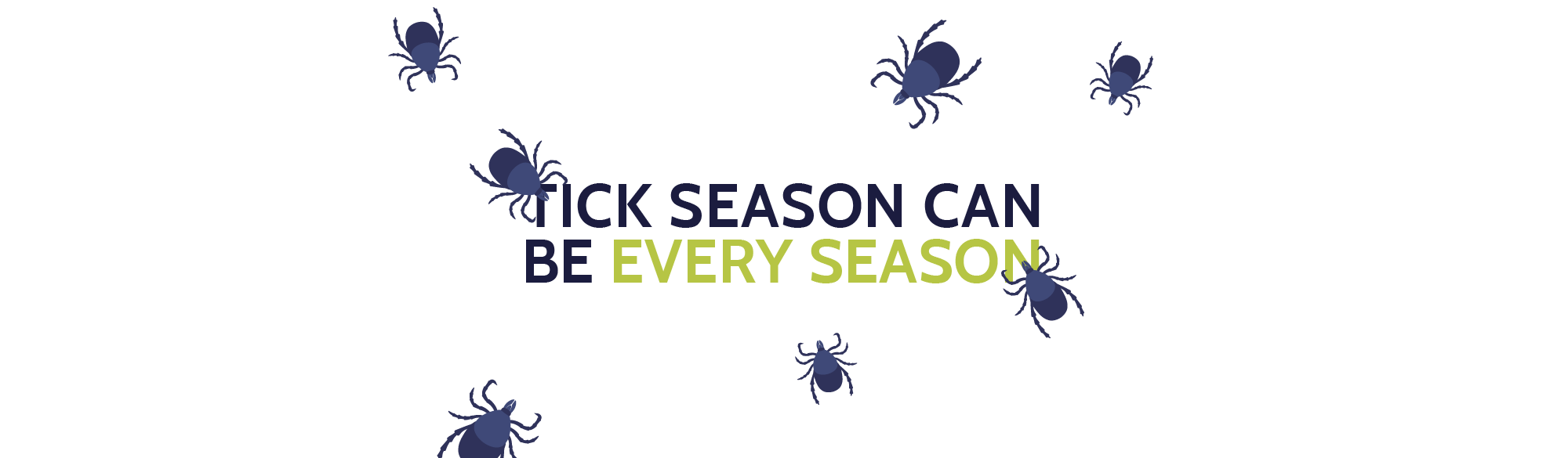 Tick season can be every season.